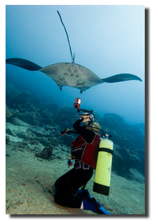 Geri filming the manta rays in Yap
